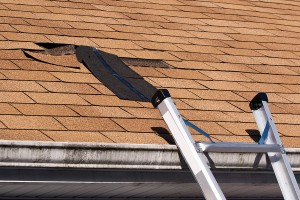 The Top 5 Weak Spots of Your Phoenix Roof